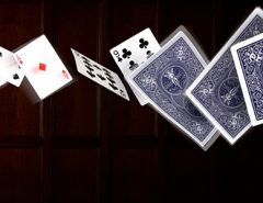 Online Poker Guides Will Help
